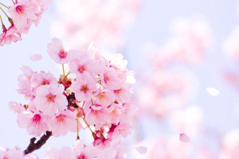 3月25日は電気記念日です!